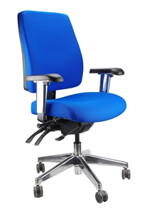 Ergoform Task Chair, 5 Fabric Options