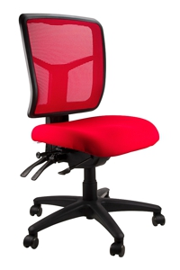 Mesh Mirae Ergonomic Chair, 6 Fabric Options