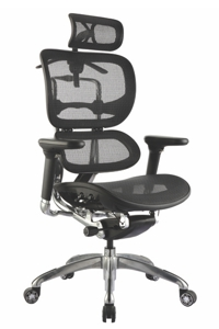Ergo1 Executive Chairs